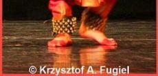 Diwali 2009- Krakow